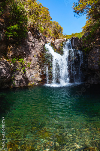 Waterfall on Calheta Levada, Madeira island - 241832769