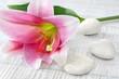 Leinwanddruck Bild - Lily and stones