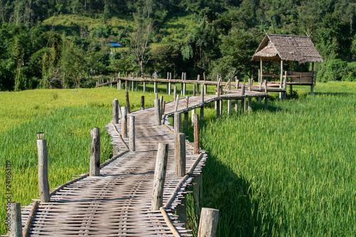 Bamboo weave walk way bridge over rice field.