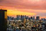 Shinjuku view and Mountain fuji in Japan
