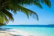 Quadro Wave of tropical sea beach on white sand with coconut leaf edge frame.