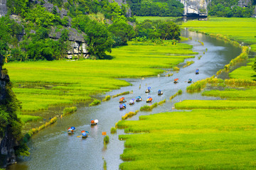 Tourist ride boat for travel sight seeing Rice field on river
