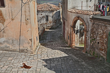 Grottole, Matera, Basilicata, Italy: ancient alley of one of the oldest villages in the region © ermess