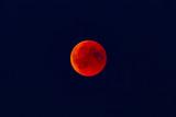 Fototapeta Space - Blutmond © niemannfrank