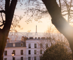 Eiffel Tower and Paris skyline seen from Montmartre in Paris, France