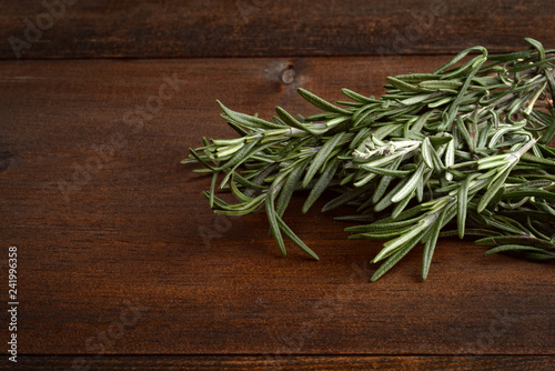closeup fresh rosemary herb
