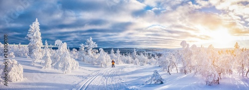 Cross-country skiing in winter wonderland in Scandinavia at sunset © JFL Photography