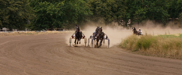 Racing horse or horse riders compete