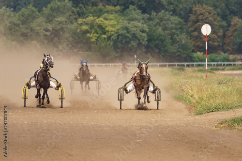 Horses racing, horse riders compete.