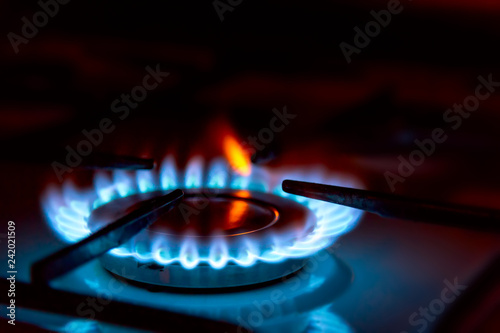 Leinwanddruck Bild Blue gas burning from a kitchen gas stove. Selective focus