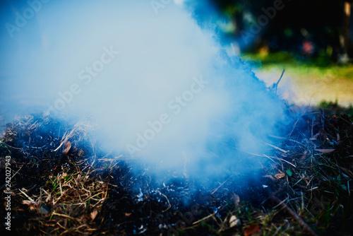 野焼きの煙 - 242027943