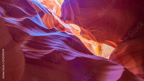 Scenic Canyon Antelope, Arizona - 242041509