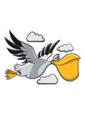 Pelikan witzig freude süss vogel seevogel fliegen Meer cartoon natur Wasser Tier mehrfarbig - 242046373