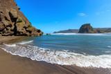 High tide Lion Rock at Piha beach, Lion Rock, New Zealand