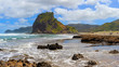 Piha beach with Lion Rock,  New Zealand