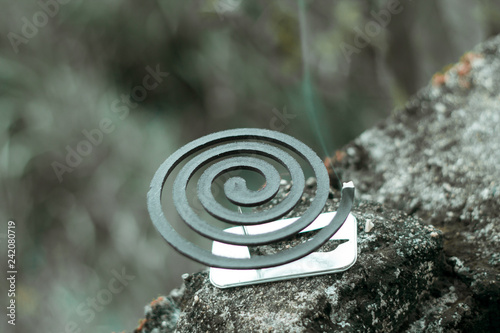Insect repellent mosquito coil incense smoking. - 242080719