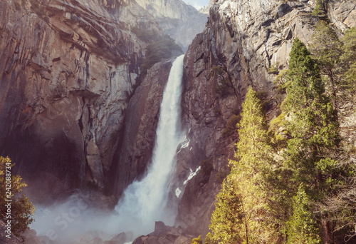 Early spring in Yosemite - 242088734