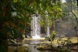 Dschungel, Wasserfall, Wald, Kenia, Wunderschön, Traumhaft, Tiefe, Wasser - 242100558