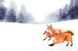A group of a fox in winter