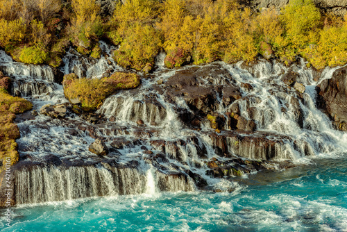 Hraunfossar waterfall in autumn - 242108161