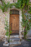 Ancient wooden door in the south of France with green grape vines