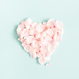 Flowers composition. Rose flower petals on pastel blue background. Valentine's Day, Mother's Day concept. Flat lay, top view, square - 242135398