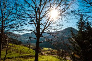 paesaggio autunnale in collina © Giuseppe Porzani