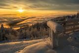 Wschód słońca na Jaworzynie Krynickiej ,Beskid Sądecki , małopolska. - 242168196