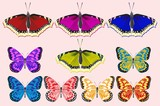 A set of butterflies of different colors.
