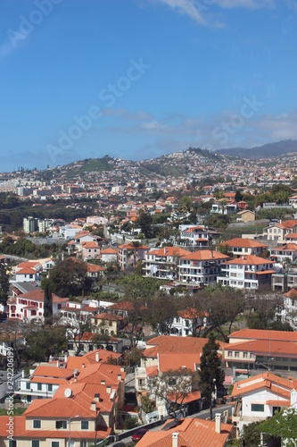 view of the city funchal madeira - 242206199