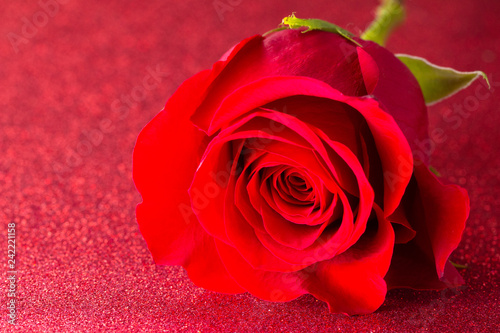 Foto Murales Single Red Rose on a Red Glitter Table