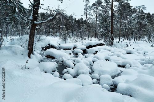 Leinwanddruck Bild Winter Snowy Landscape