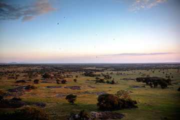 Dramatic sunset lighting over the Serengeti savannah from an overlook