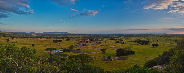 Panoramic sunset lighting over the Serengeti savannah from above