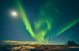 Fototapeta Tęcza - Aurora Borealis Northern Light Iceland © Roksolana