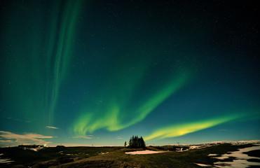 Aurora Borealis Northern Light Iceland
