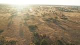 Cinematic hot air ballon ride at sunrise over Okavango Delta Botswana Africa landscape - 242228592