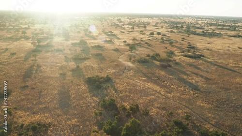 Cinematic hot air ballon ride at sunrise over Okavango Delta Botswana Africa landscape