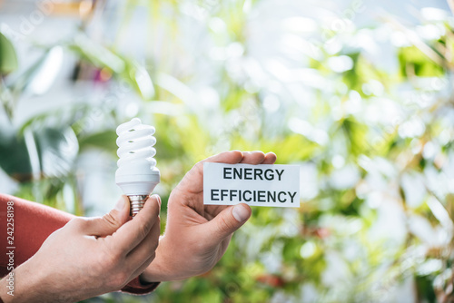 cropped view of man holding fluorescent lamp and card with lettering, energy efficiency concept