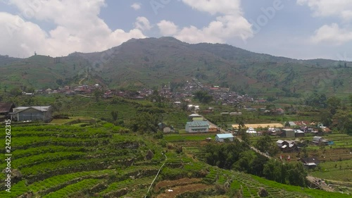 asian town with mosque in mountains among agricultural land, rice terraces. mountains with farmlands, rice fields, village, fields with crops, trees. Aerial view farm lands on mountainside. tropical
