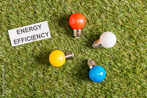 top view of colorful fluorescent lamps near paper card with lettering on green grass, energy efficiency concept