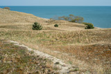 Landscape of the Curonian Spit in the summer - 242266340