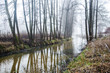 Leinwanddruck Bild - Dark forest landscape. A river and trees in the fog on a cloudy winter day. Latvia