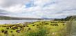Leinwanddruck Bild - waterside scenery in Connemara