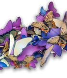 colorful butterfly ornament