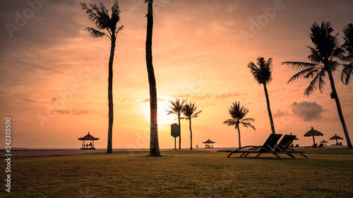beach with palm trees at dawn Bali Indonesia