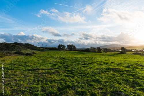 Sun shining over a green meadow at sunset