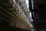 Walking down the cells - 242341116