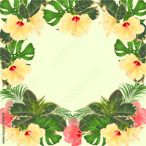 Frame Tropical Flowers Floral Arrangement With Pink And Yellow