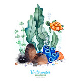 Underwater creatures.Watercolor composition with multicolored corals,seashells,seaweeds and turtle.Perfect for invitations,party decorations,printable,craft project,greeting cards,blog,texture.